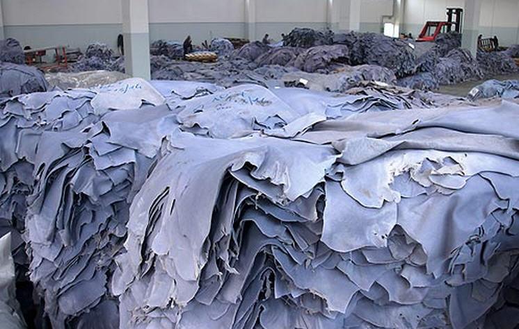 Cow Wet Blue Split Leather Sample in Bangladesh